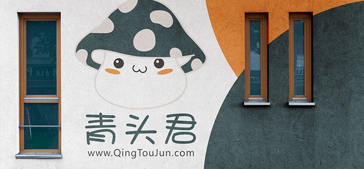 一键特效样机《青头君》QingTouJun.com